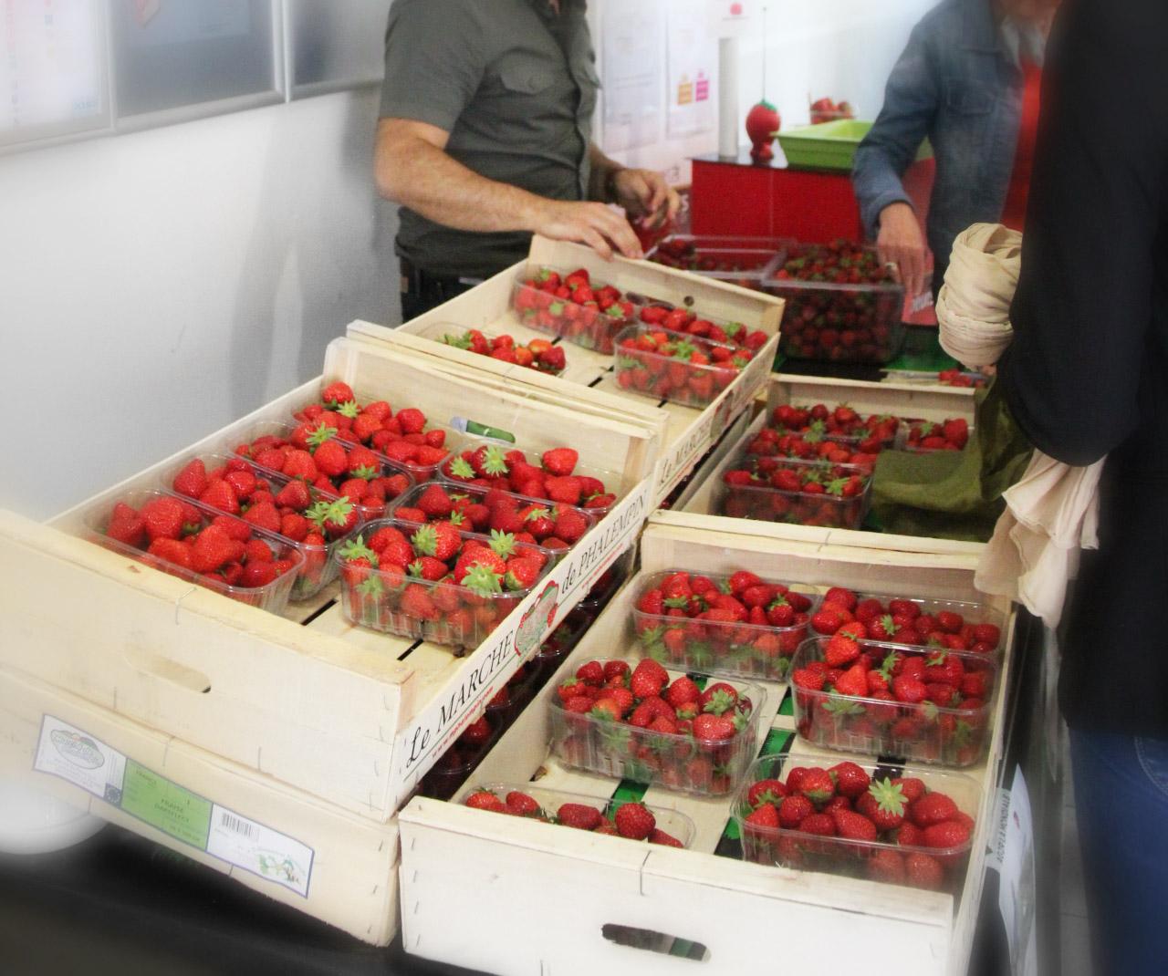 Rencontre producteurs locaux, fraises de saison à Dupont Restauration à l'occasion de la semaine du Développement Durable